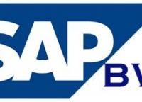 SAP BW Online Training and Placement in USA